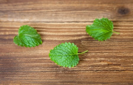 Three leaves of lemon balm on wood  photo