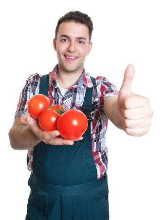 recommending: Young farmer recommending fresh tomatoes Stock Photo