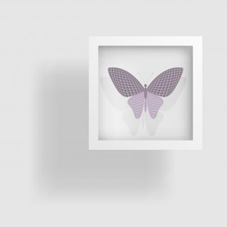 wingspan: farfalla nella foto e la sua riflessione