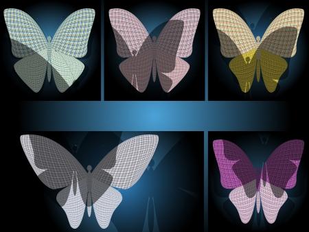 wingspan: set di farfalle Vettoriali