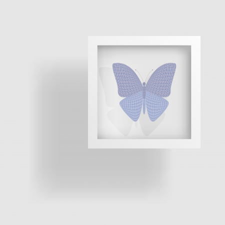 butterfly in the picture and its reflection Illustration