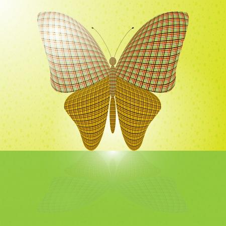 wingspan: farfalla sul muro e la sua riflessione su una superficie orizzontale Vettoriali