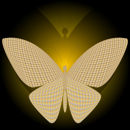 wingspan: farfalla e la sua riflessione Vettoriali