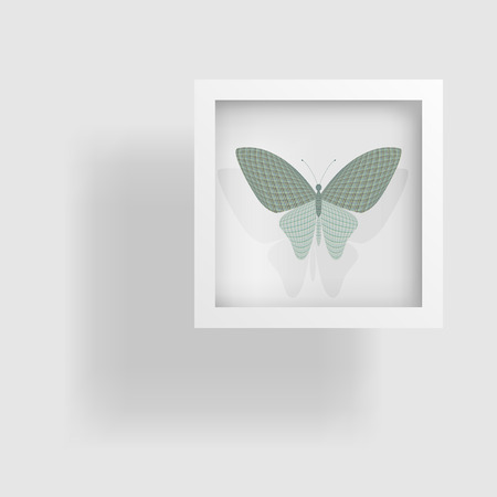 wingspan: butterfly in the picture and its reflection Illustration