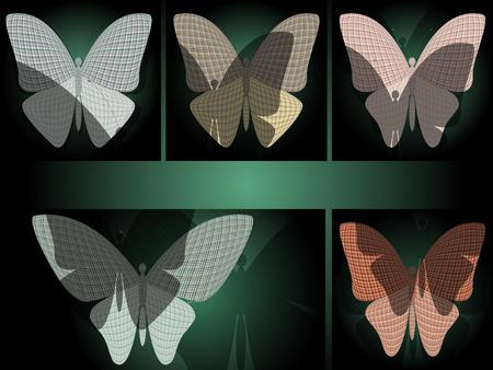 wingspan: set of butterflies