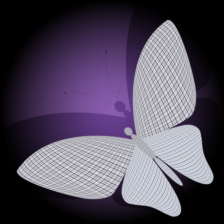 chitin: butterfly