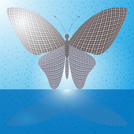 wingspan: farfalla sulla parete e la sua riflessione su una superficie orizzontale