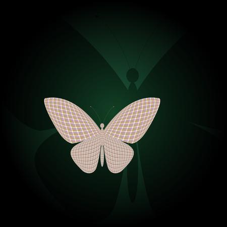 wingspan: farfalla