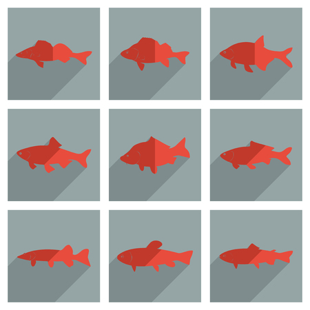fish exhibition: It is a set of freshwater fish with shadow flat concept modern design