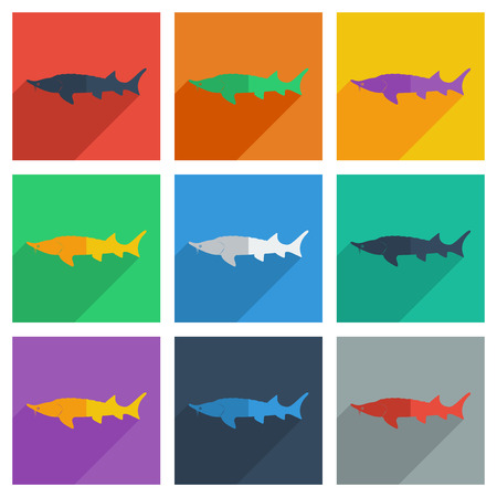 freshwater: It is a set of freshwater fish with shadow flat concept modern design