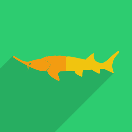 stellate: Flat icons modern design with shadow of stellate sturgeon. Vector illustration Illustration