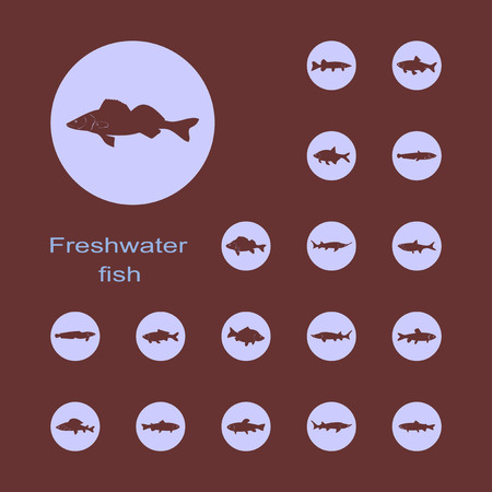 freshwater fish: It is a set of plain picture freshwater fish icons