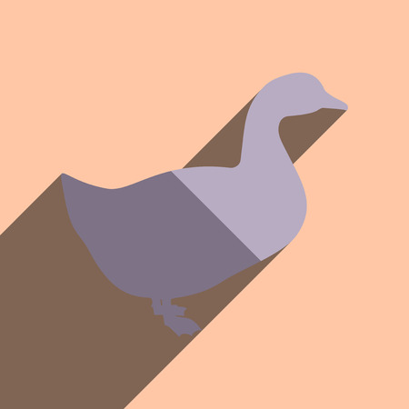 duck feet: Flat icons with shadow of duck. Vector illustration