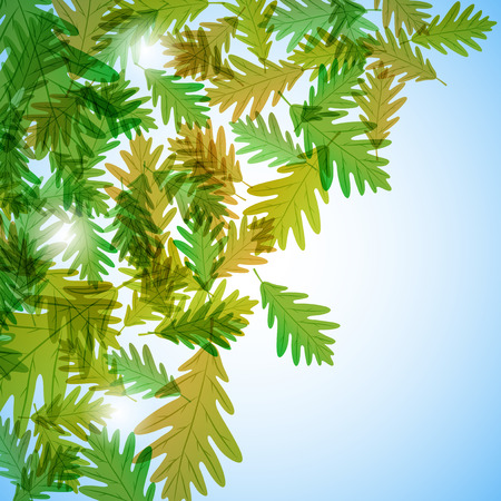 still life: Illustration autumn still life. Oak leaves. Vector background