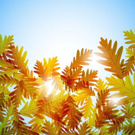 still: Illustration autumn still life. Oak leaves. Vector background