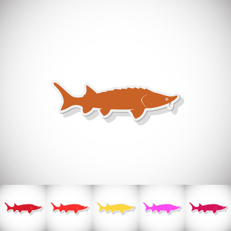 Fish sturgeon. Flat sticker with shadow on white background. Vector illustration