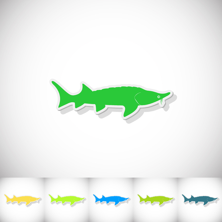Fish sterlet. Flat sticker with shadow on white background. Vector illustration