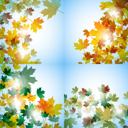 fallen: Illustration autumn still life. Maple leaves. Vector background Illustration