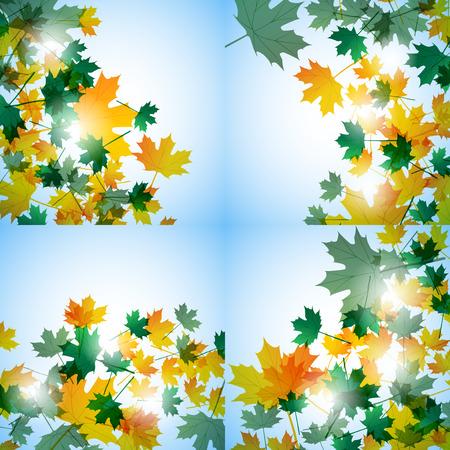 still: Illustration autumn still life. Maple leaves.