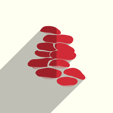 fly agaric: Mushrooms flat icons with of shadow. Vector illustration.