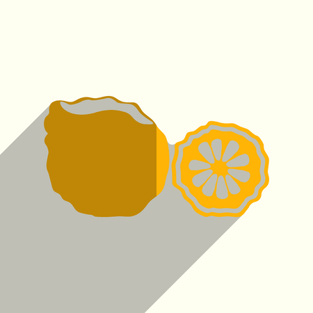 collect: Fruit flat icons with of shadow. Vector illustration