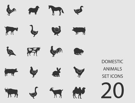 Domestic animals set of flat icons. Vector illustration