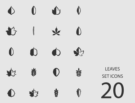 Leaves set of flat icons Vector illustration
