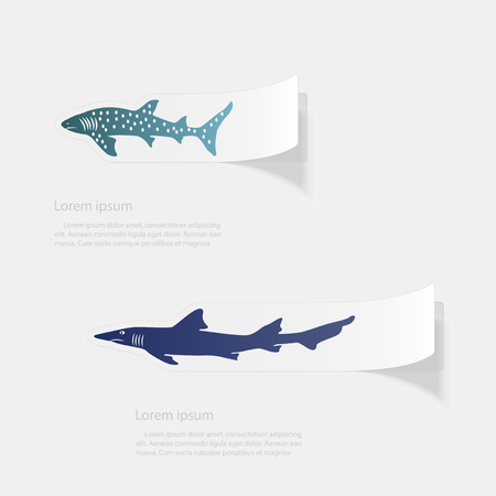 Shark. Flat sticker with shadow on white background Illustration