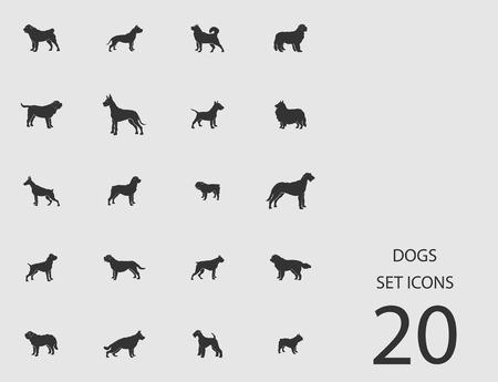 Dogs set of flat icons image Illustration