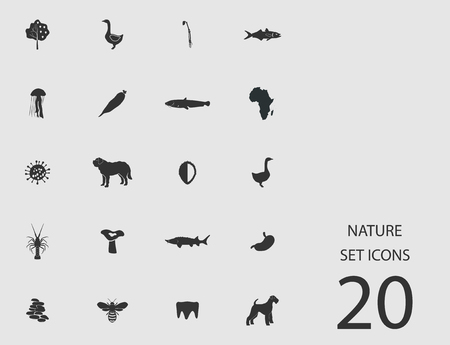 Nature set of flat icons. Vector illustration Vectores