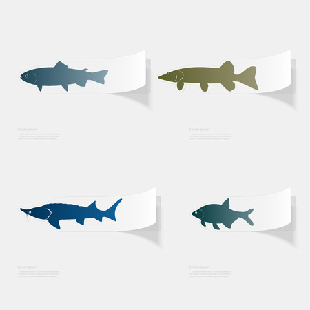 Freshwater fish. Flat sticker with shadow on white background Vettoriali