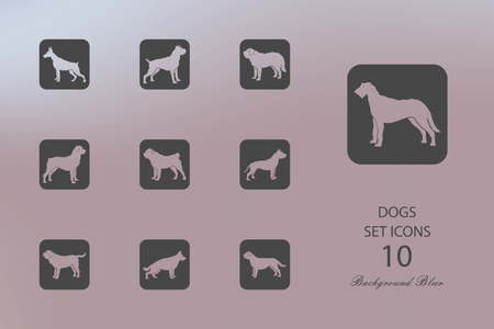 Dogs. Set of flat icons on blurred background