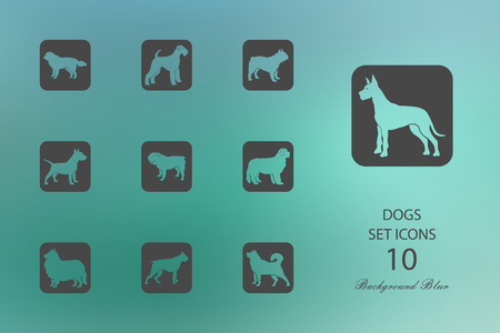Dogs. Set of flat icons on blurred background. Vector illustration