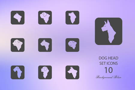Dog head. Set of flat icons on blurred background. Vector illustration Illustration