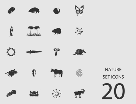Nature set of flat icons. Vector illustration Illustration