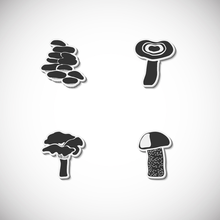 Mushrooms set of icons with shadow. Vector illustration