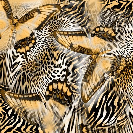 guepardo: mariposa Serpiente de piel de cebra Foto de archivo