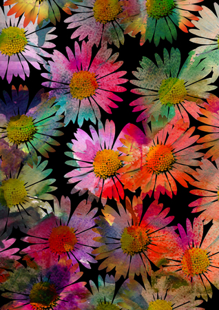 colourful daisy flower background Stock Photo