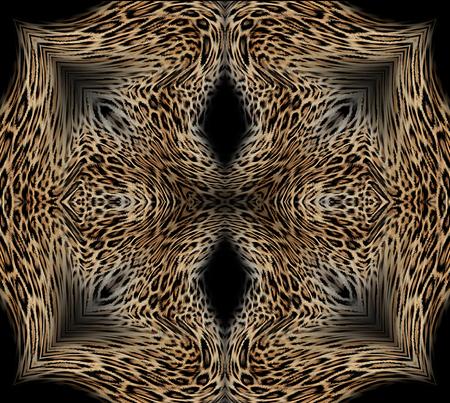 Truffes léopard Banque d'images - 93546385
