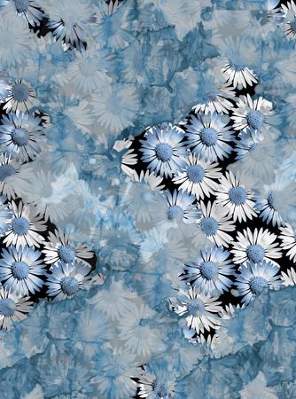 flower daisy Banque d'images