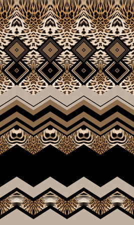 leopard leather and geometric pattern Banque d'images