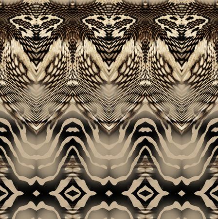 snake zebra skin  background Imagens