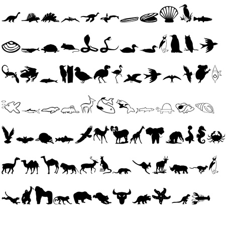 animals icon Stock Photo - 13368331
