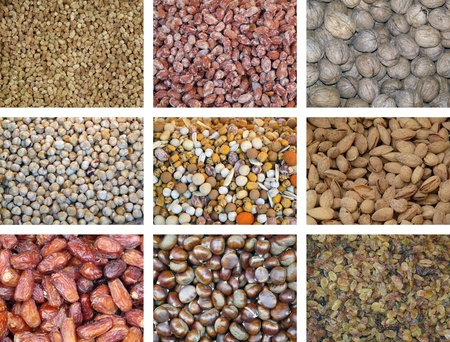 chickpea: Collection of dried and mixed nuts Stock Photo