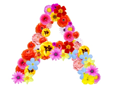 letters a flower Stock Photo - 14540192