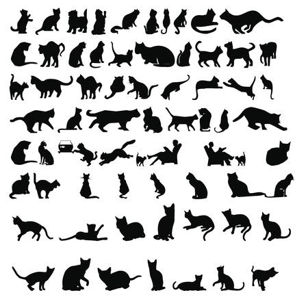 kedi siluetleri Stock Photo