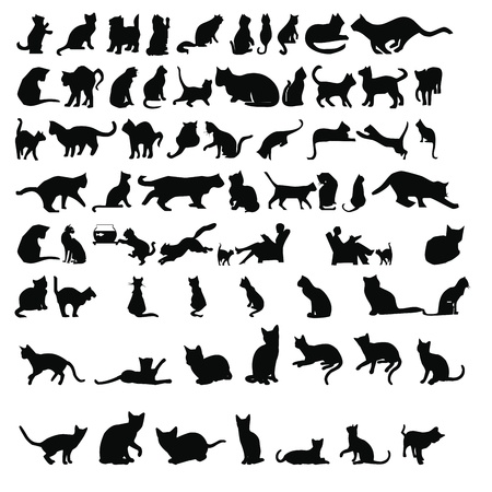 silueta de gato: siluetas de gatos Foto de archivo