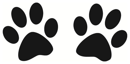 paw print: Vector - Black paw print