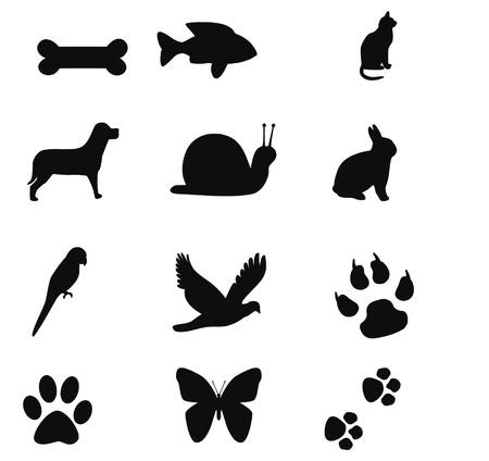patas de perros: animales