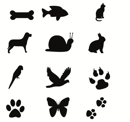 silhouette lapin: animaux
